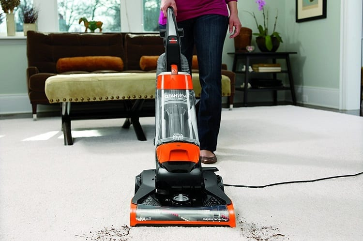Vacuuming With Bagless Vacuum