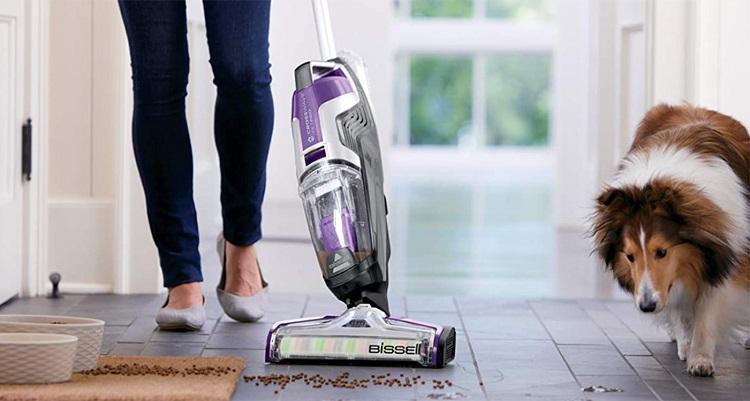 Vacuuming Dog Food