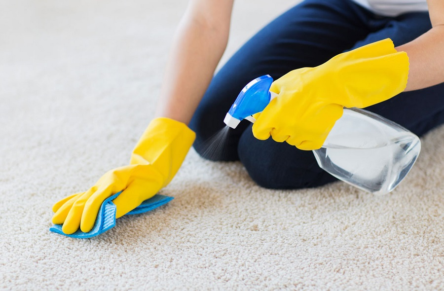 How Do You Get Stains Out Of Carpets