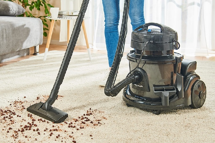 wet/dry vac for cleaning carpet